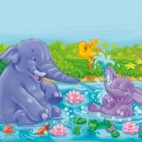 elefanti-nello-stagno